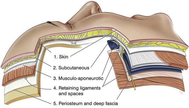 手術分布圖